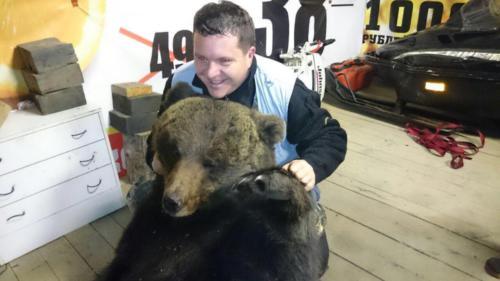 Охота на медведя 08.2017