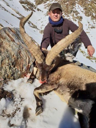 Охота в Испании 11.2017