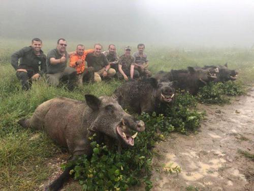 Охота в Турции 2017год