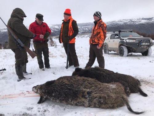 Охота в Турции 2019 год